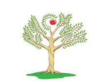 Tree Of Knowledge With Apple In The Center Clipart
